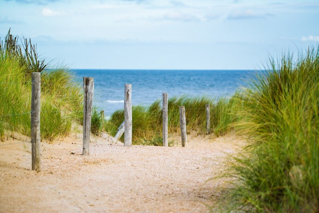 thin, sea, fence